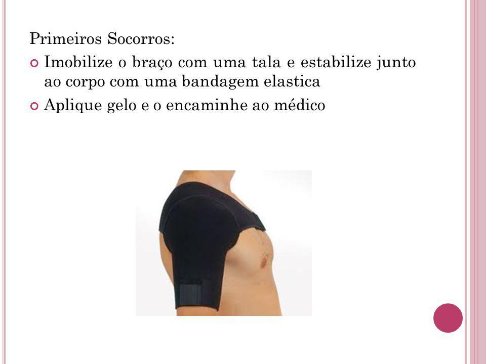 Primeiros Socorros: Imobilize o braço com uma tala e estabilize junto ao corpo com uma bandagem elastica Aplique gelo e o encaminhe ao médico