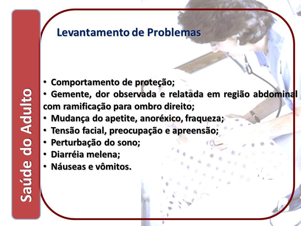 Saúde do Adulto Saúde do Adulto Levantamento de Problemas Comportamento de proteção; Comportamento de proteção; Gemente, dor observada e relatada em r