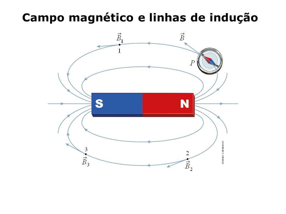Campo magnético e linhas de indução STUDIO CAPARROZ