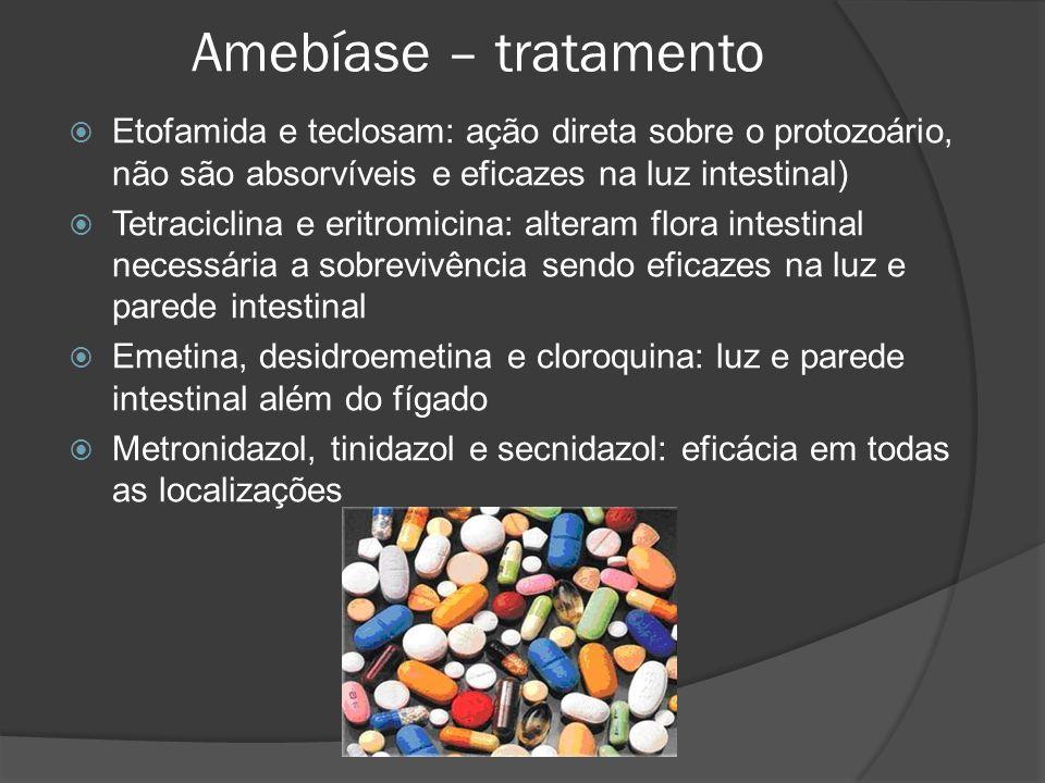 Amebíase – tratamento  Etofamida e teclosam: ação direta sobre o protozoário, não são absorvíveis e eficazes na luz intestinal)  Tetraciclina e eritromicina: alteram flora intestinal necessária a sobrevivência sendo eficazes na luz e parede intestinal  Emetina, desidroemetina e cloroquina: luz e parede intestinal além do fígado  Metronidazol, tinidazol e secnidazol: eficácia em todas as localizações
