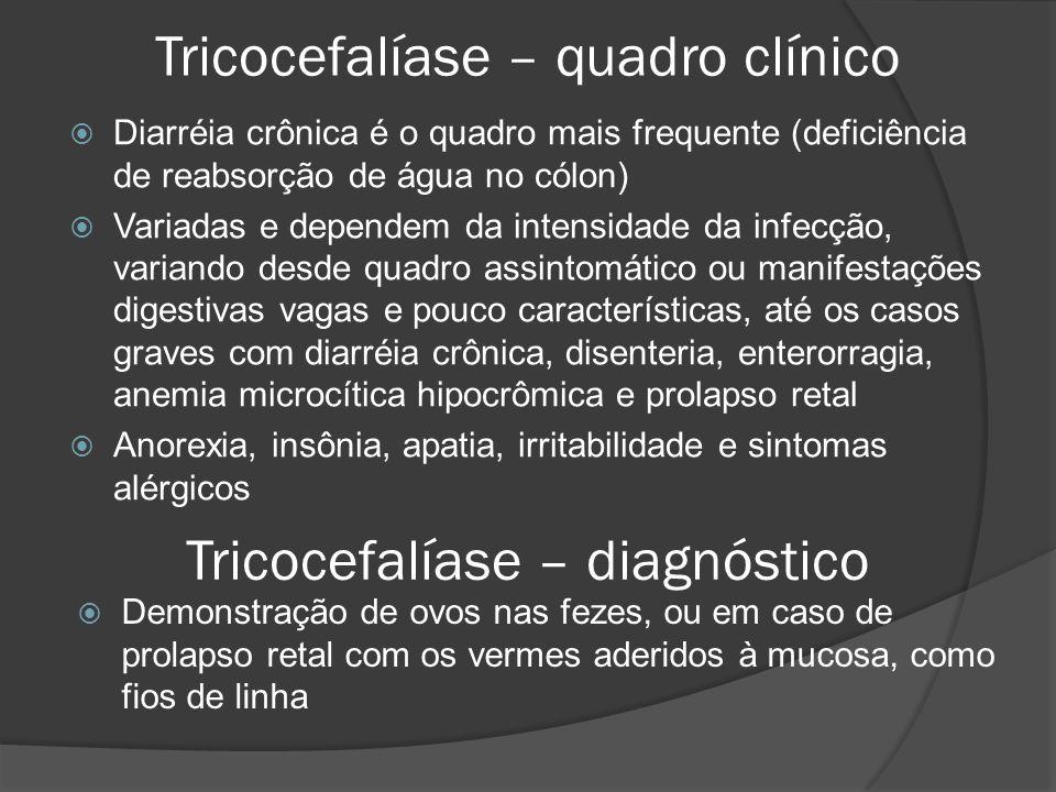 Tricocefalíase – quadro clínico  Diarréia crônica é o quadro mais frequente (deficiência de reabsorção de água no cólon)  Variadas e dependem da intensidade da infecção, variando desde quadro assintomático ou manifestações digestivas vagas e pouco características, até os casos graves com diarréia crônica, disenteria, enterorragia, anemia microcítica hipocrômica e prolapso retal  Anorexia, insônia, apatia, irritabilidade e sintomas alérgicos Tricocefalíase – diagnóstico  Demonstração de ovos nas fezes, ou em caso de prolapso retal com os vermes aderidos à mucosa, como fios de linha