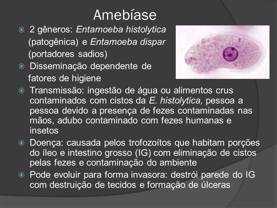 Amebíase  2 gêneros: Entamoeba histolytica (patogênica) e Entamoeba dispar (portadores sadios)  Disseminação dependente de fatores de higiene  Transmissão: ingestão de água ou alimentos crus contaminados com cistos da E.