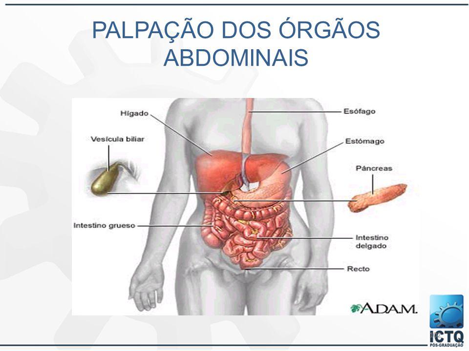 102 PALPAÇÃO DOS ÓRGÃOS ABDOMINAIS