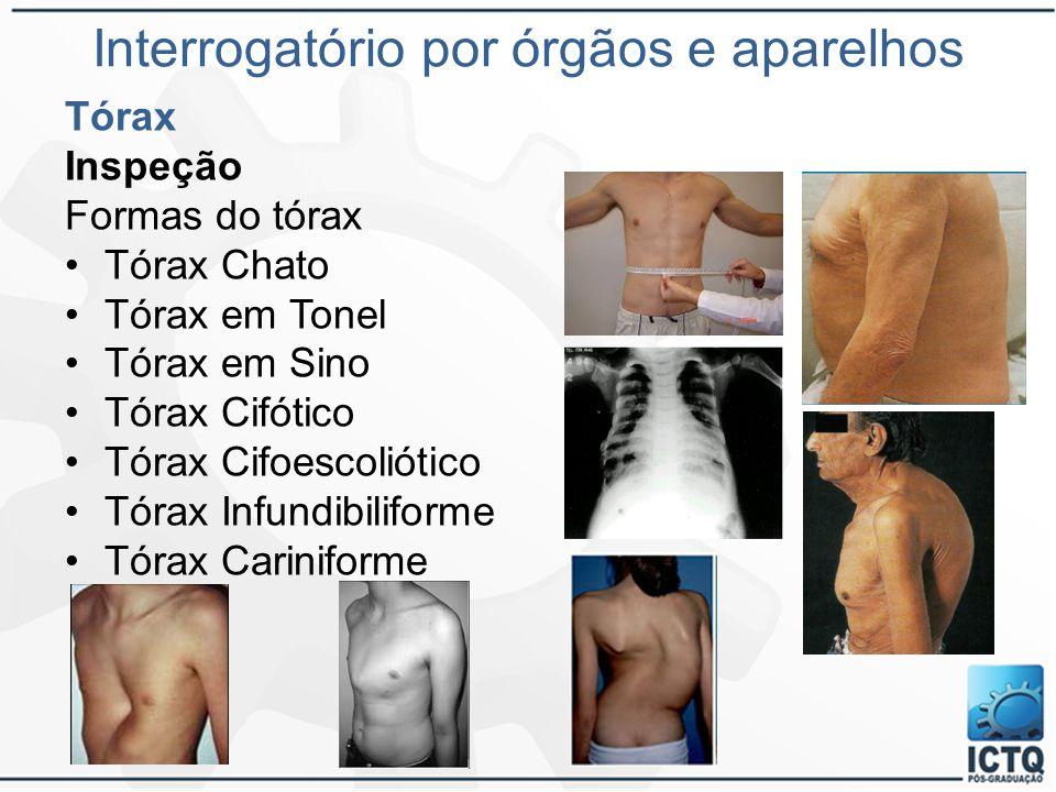Interrogatório por órgãos e aparelhos Tórax Inspeção Formas do tórax Tórax Chato Tórax em Tonel Tórax em Sino Tórax Cifótico Tórax Cifoescoliótico Tór