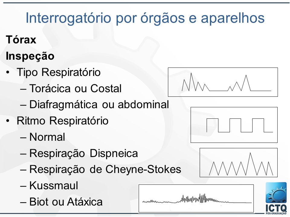 Interrogatório por órgãos e aparelhos Tórax Inspeção Tipo Respiratório –Torácica ou Costal –Diafragmática ou abdominal Ritmo Respiratório –Normal –Res