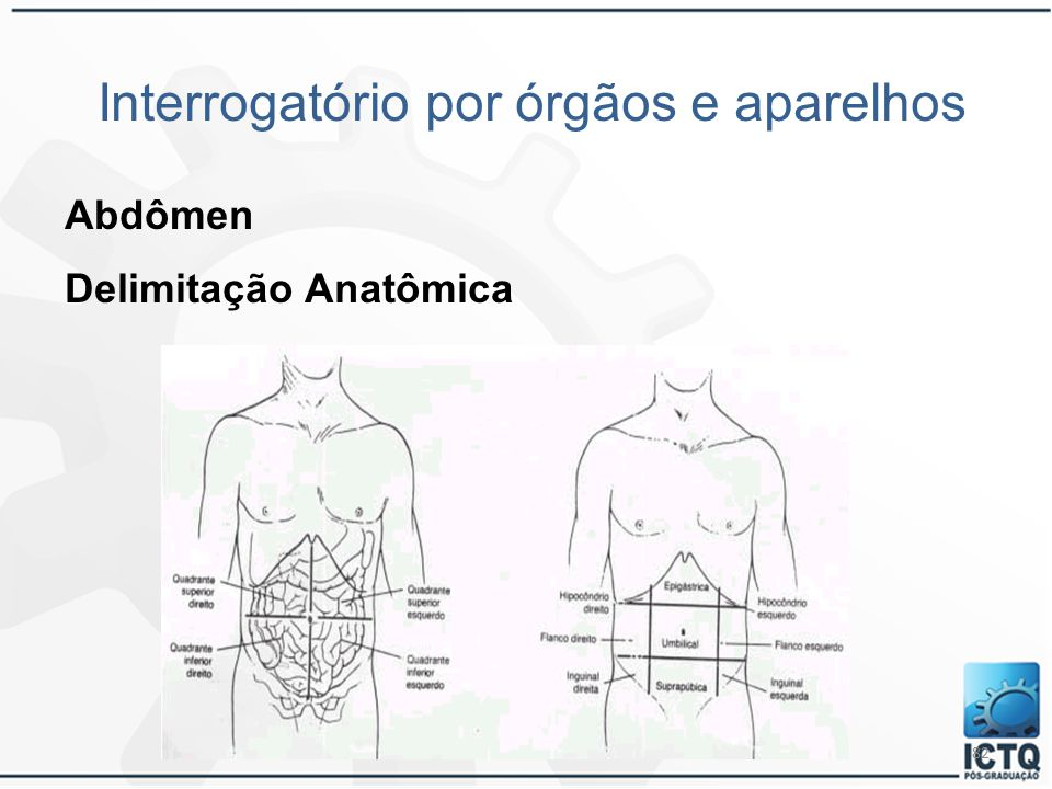82 Interrogatório por órgãos e aparelhos Abdômen Delimitação Anatômica