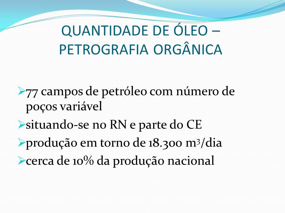 QUANTIDADE DE ÓLEO – PETROGRAFIA ORGÂNICA  77 campos de petróleo com número de poços variável  situando-se no RN e parte do CE  produção em torno d