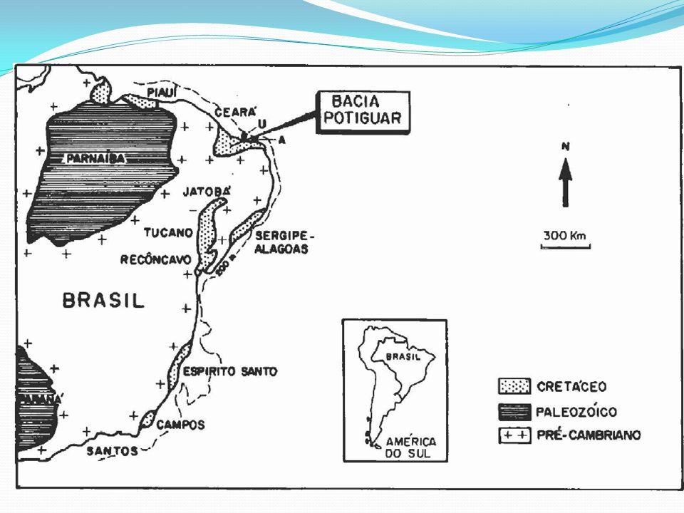 Dados específicos Início exploração: (em terra): 1956 (no mar): 1972 Primeira descoberta no mar – Campo de Ubarana: 1973 Primeira descoberta em terra – Campo de Mossoró: 1979