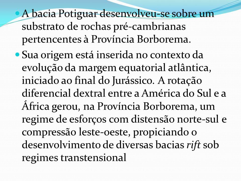 A bacia Potiguar desenvolveu-se sobre um substrato de rochas pré-cambrianas pertencentes à Província Borborema. Sua origem está inserida no contexto d