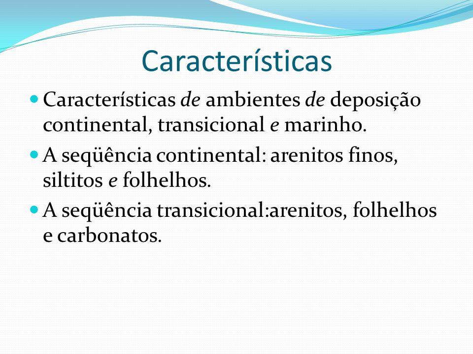 Características Características de ambientes de deposição continental, transicional e marinho. A seqüência continental: arenitos finos, siltitos e fol