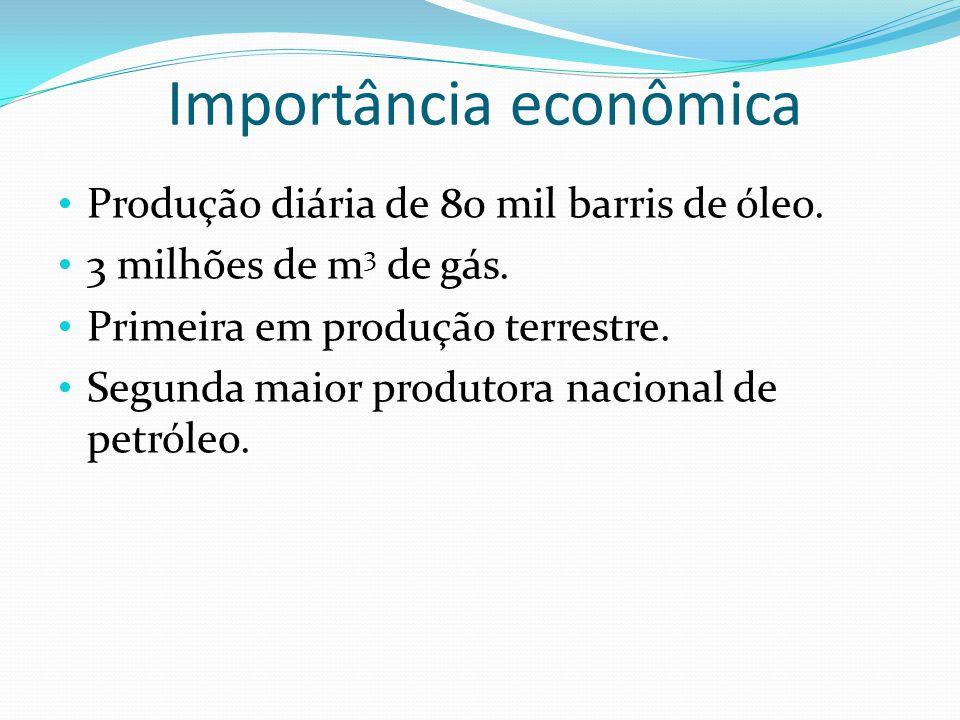 Importância econômica Produção diária de 80 mil barris de óleo. 3 milhões de m 3 de gás. Primeira em produção terrestre. Segunda maior produtora nacio