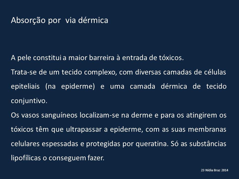 23 Nídia Braz 2014 Absorção por via dérmica A pele constitui a maior barreira à entrada de tóxicos. Trata-se de um tecido complexo, com diversas camad