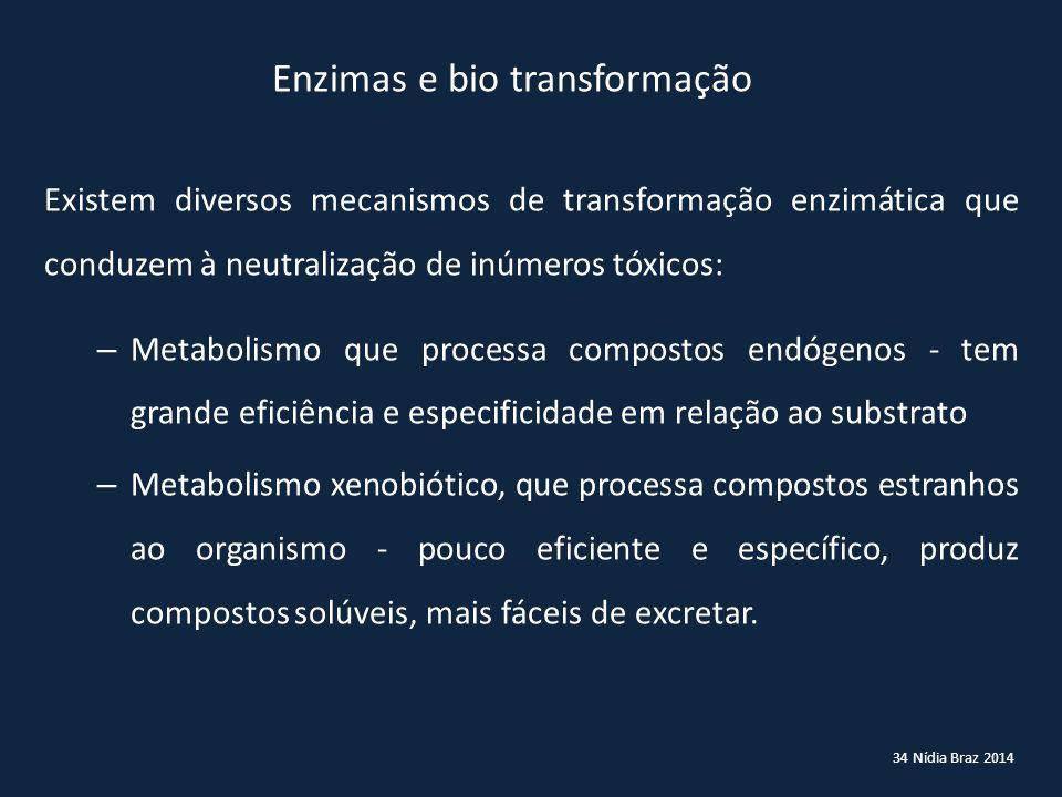 34 Nídia Braz 2014 Enzimas e bio transformação Existem diversos mecanismos de transformação enzimática que conduzem à neutralização de inúmeros tóxico