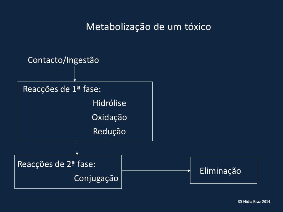 35 Nídia Braz 2014 Metabolização de um tóxico Contacto/Ingestão Reacções de 1ª fase: Hidrólise Oxidação Redução Reacções de 2ª fase: Conjugação Elimin