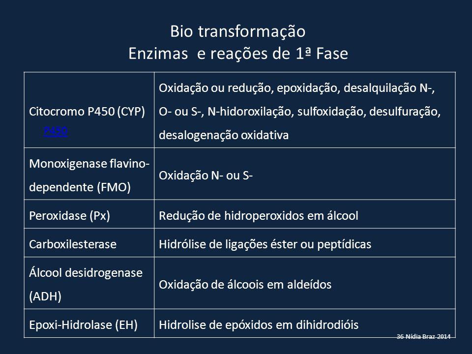 36 Nídia Braz 2014 Bio transformação Enzimas e reações de 1ª Fase Citocromo P450 (CYP) Oxidação ou redução, epoxidação, desalquilação N-, O- ou S-, N-