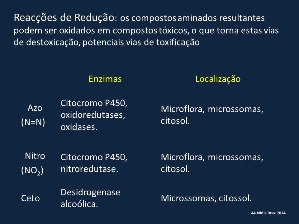 44 Nídia Braz 2014 Reacções de Redução : os compostos aminados resultantes podem ser oxidados em compostos tóxicos, o que torna estas vias de destoxic