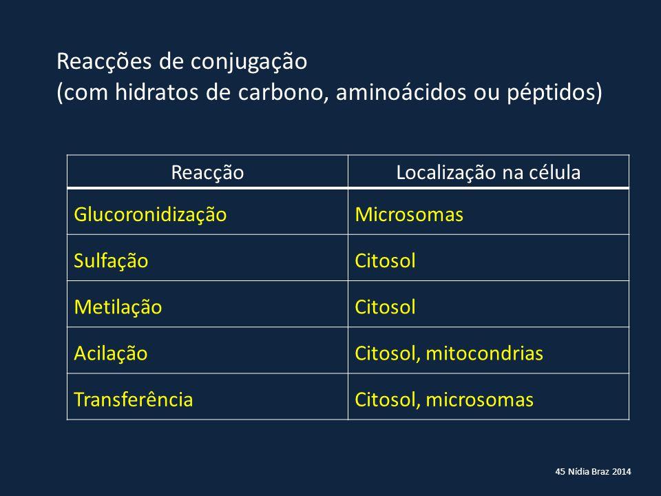 45 Nídia Braz 2014 Reacções de conjugação (com hidratos de carbono, aminoácidos ou péptidos) ReacçãoLocalização na célula GlucoronidizaçãoMicrosomas S