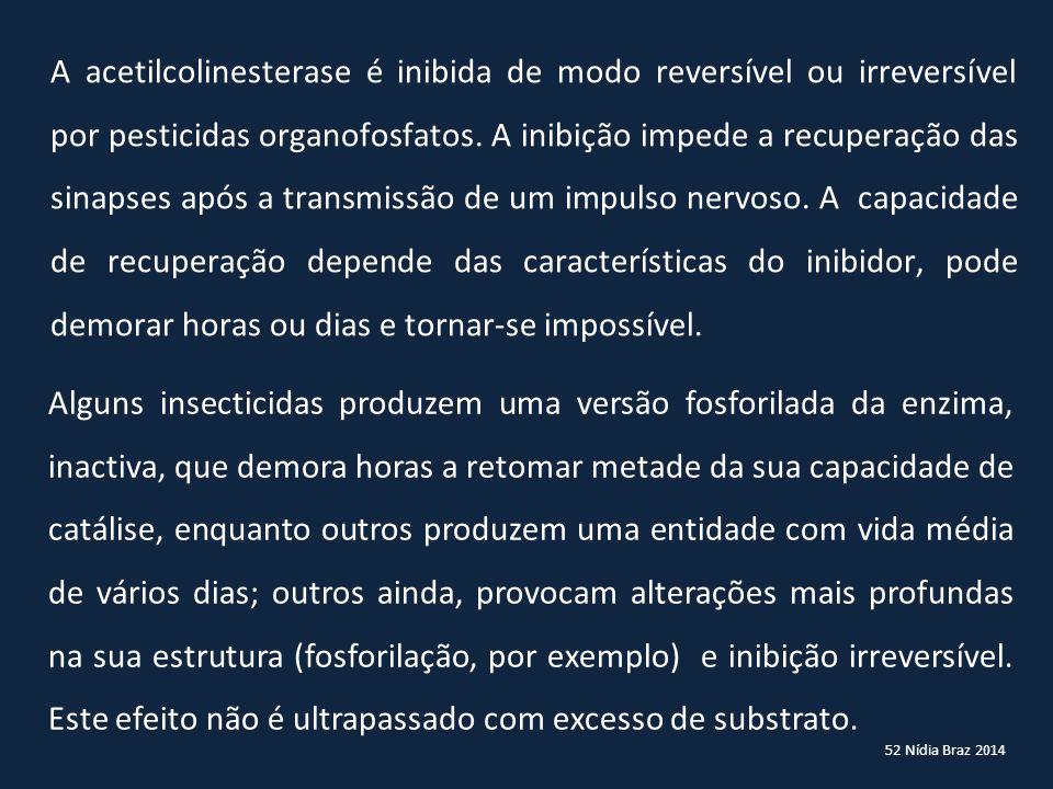 52 Nídia Braz 2014 A acetilcolinesterase é inibida de modo reversível ou irreversível por pesticidas organofosfatos. A inibição impede a recuperação d