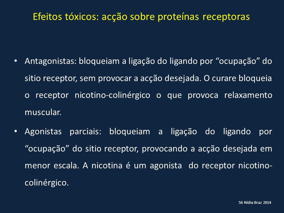 """56 Nídia Braz 2014 Efeitos tóxicos: acção sobre proteínas receptoras Antagonistas: bloqueiam a ligação do ligando por """"ocupação"""" do sitio receptor, se"""