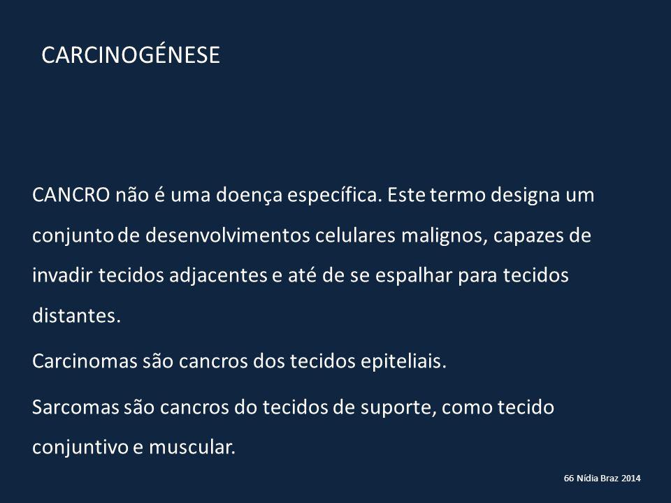 66 Nídia Braz 2014 CARCINOGÉNESE CANCRO não é uma doença específica. Este termo designa um conjunto de desenvolvimentos celulares malignos, capazes de