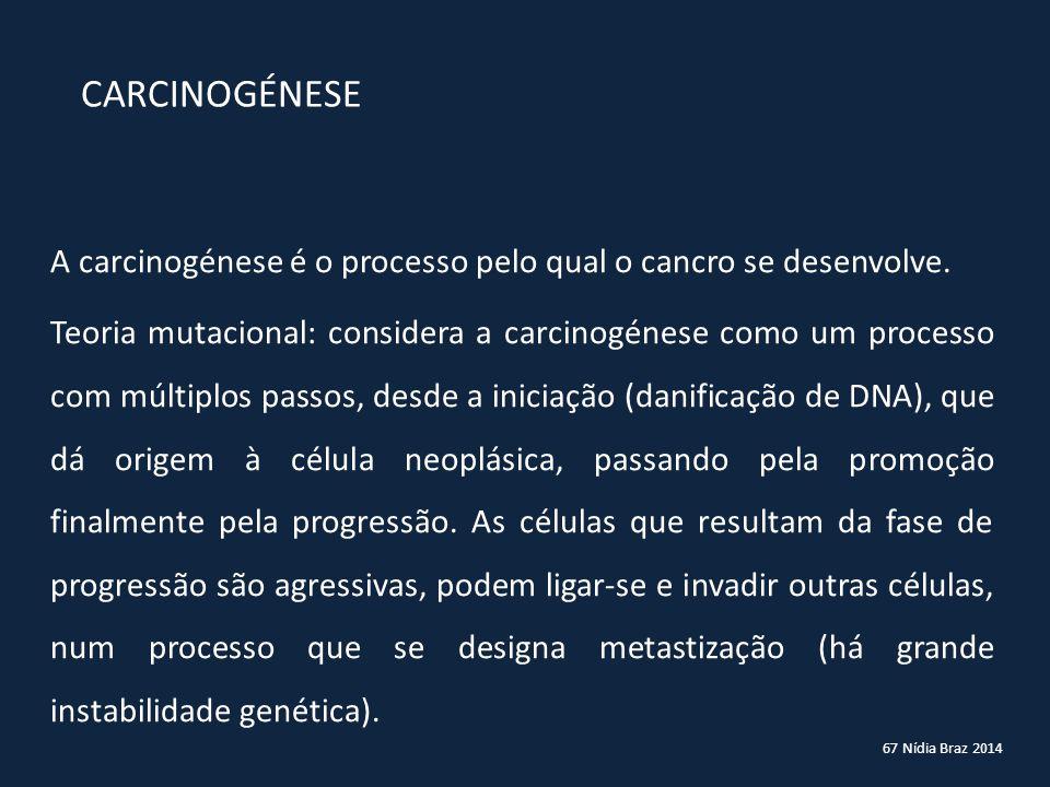 67 Nídia Braz 2014 CARCINOGÉNESE A carcinogénese é o processo pelo qual o cancro se desenvolve. Teoria mutacional: considera a carcinogénese como um p