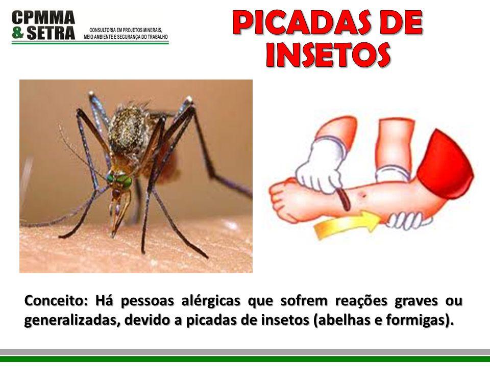 Conceito: Há pessoas alérgicas que sofrem reações graves ou generalizadas, devido a picadas de insetos (abelhas e formigas).