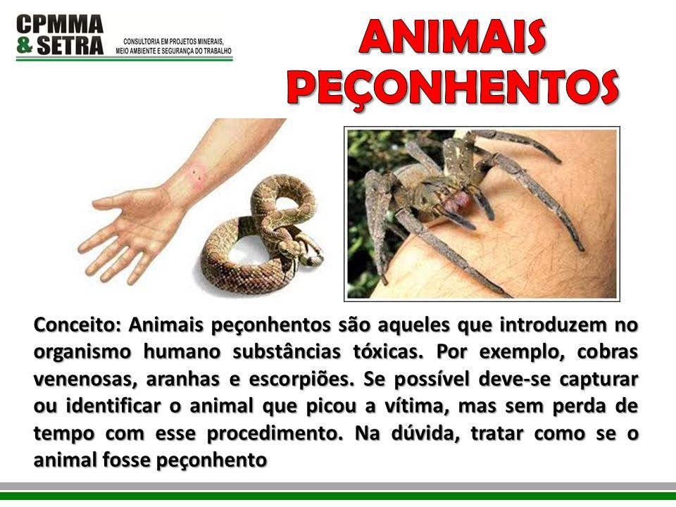 Conceito: Animais peçonhentos são aqueles que introduzem no organismo humano substâncias tóxicas. Por exemplo, cobras venenosas, aranhas e escorpiões.