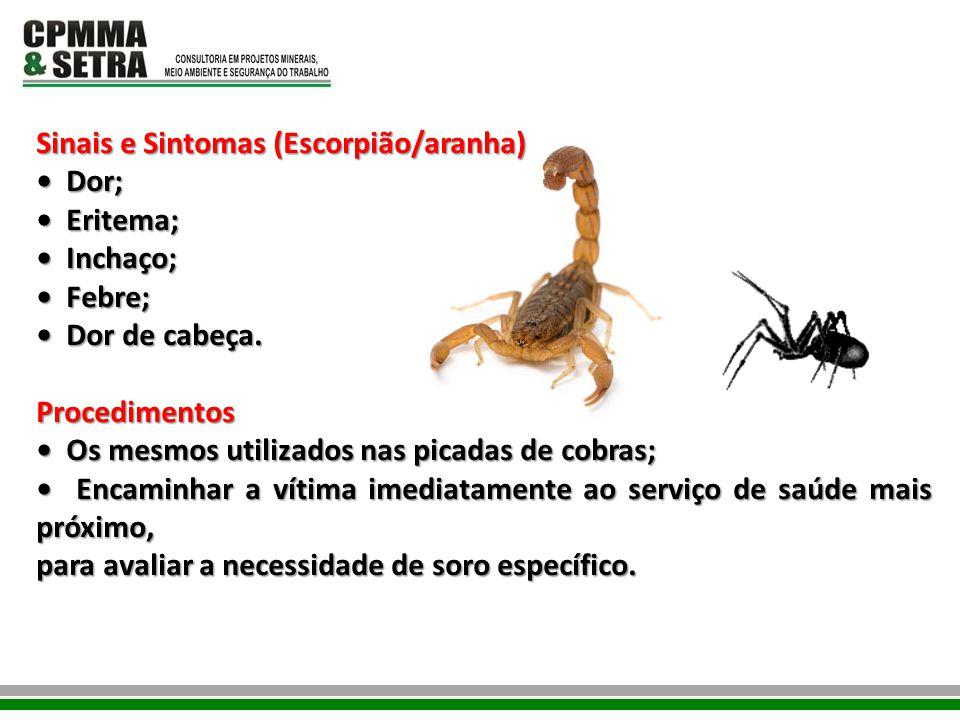 Sinais e Sintomas (Escorpião/aranha) Dor; Dor; Eritema; Eritema; Inchaço; Inchaço; Febre; Febre; Dor de cabeça. Dor de cabeça.Procedimentos Os mesmos