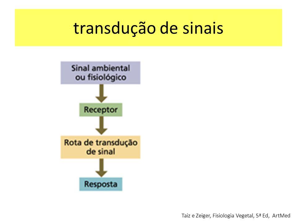 transdução de sinais Taiz e Zeiger, Fisiologia Vegetal, 5ª Ed, ArtMed