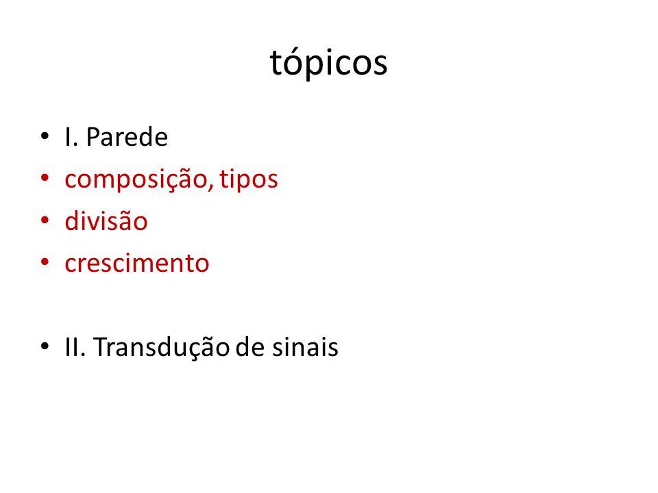 tópicos I. Parede composição, tipos divisão crescimento II. Transdução de sinais
