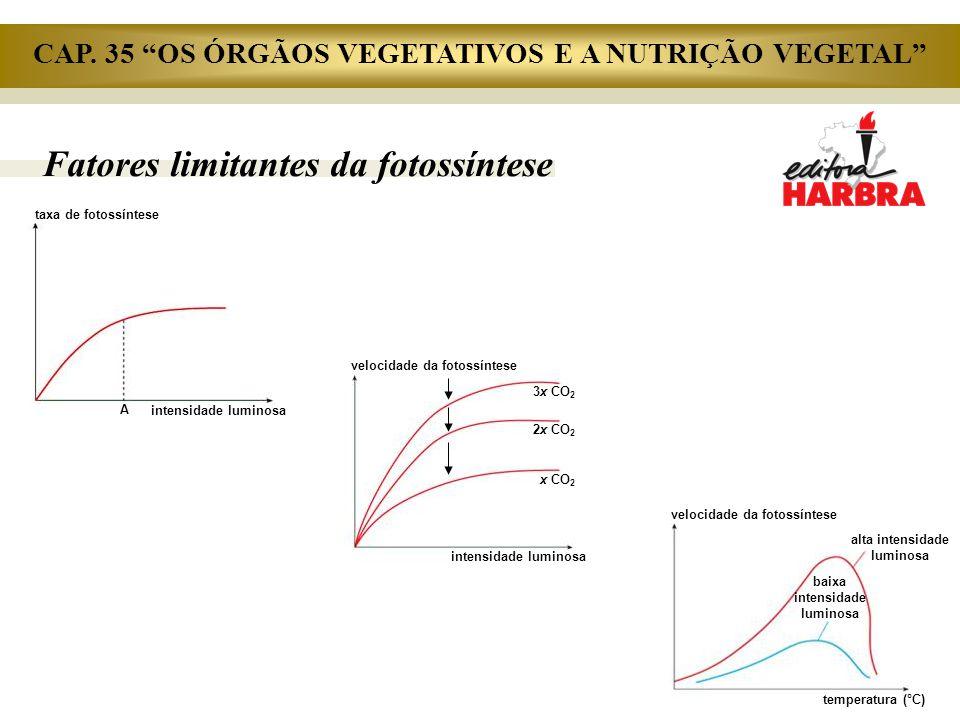 Fatores limitantes da fotossíntese taxa de fotossíntese intensidade luminosa A velocidade da fotossíntese intensidade luminosa 3x CO 2 2x CO 2 x CO 2