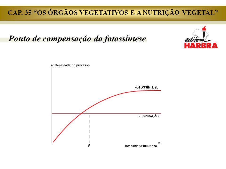 """Ponto de compensação da fotossíntese intensidade do processo FOTOSSÍNTESE RESPIRAÇÃO intensidade luminosa P CAP. 35 """"OS ÓRGÃOS VEGETATIVOS E A NUTRIÇÃ"""