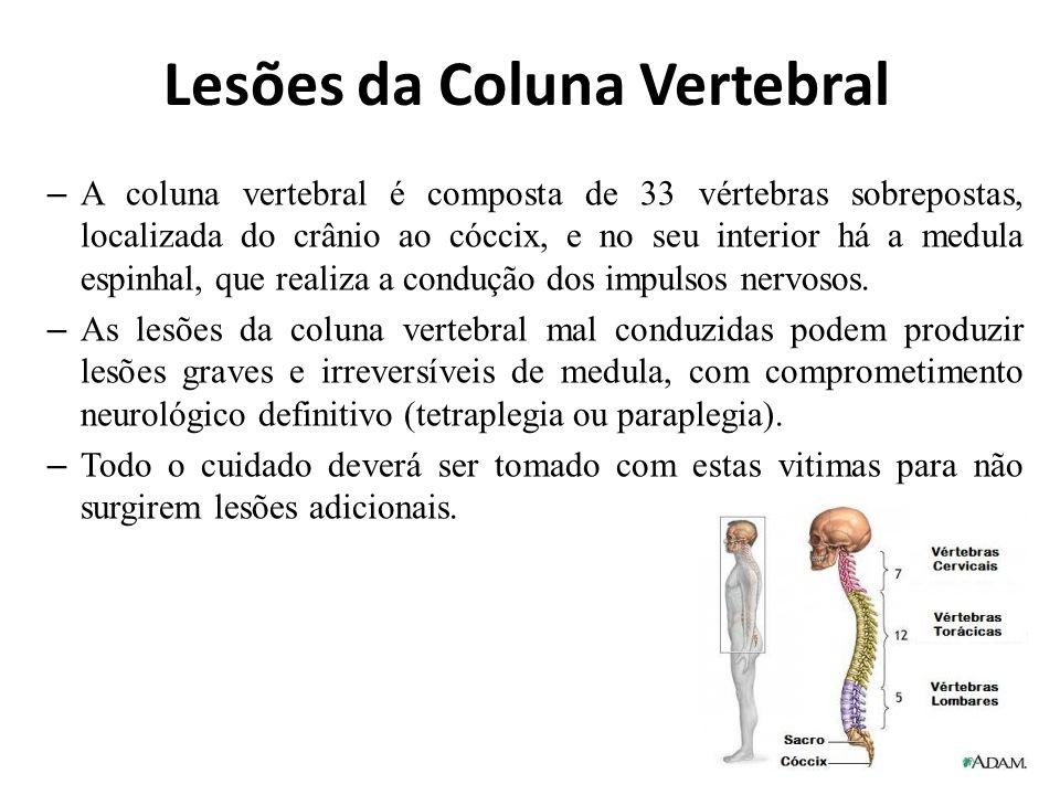 Lesões da Coluna Vertebral – A coluna vertebral é composta de 33 vértebras sobrepostas, localizada do crânio ao cóccix, e no seu interior há a medula