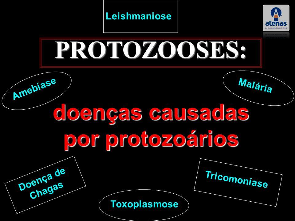 PROTOZOOSES: doenças causadas por protozoários Doença de Chagas Tricomoníase Leishmaniose Amebíase Malária Toxoplasmose