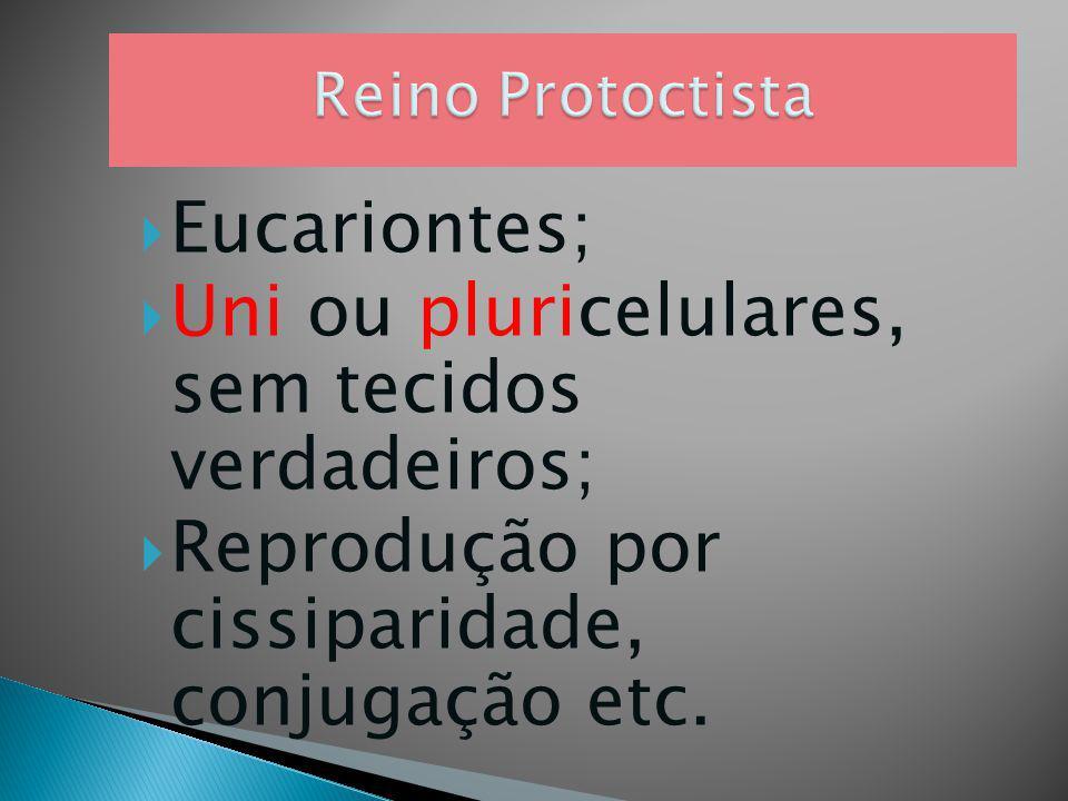 PROF. LOURENÇO Pág. 75 Cap. 3