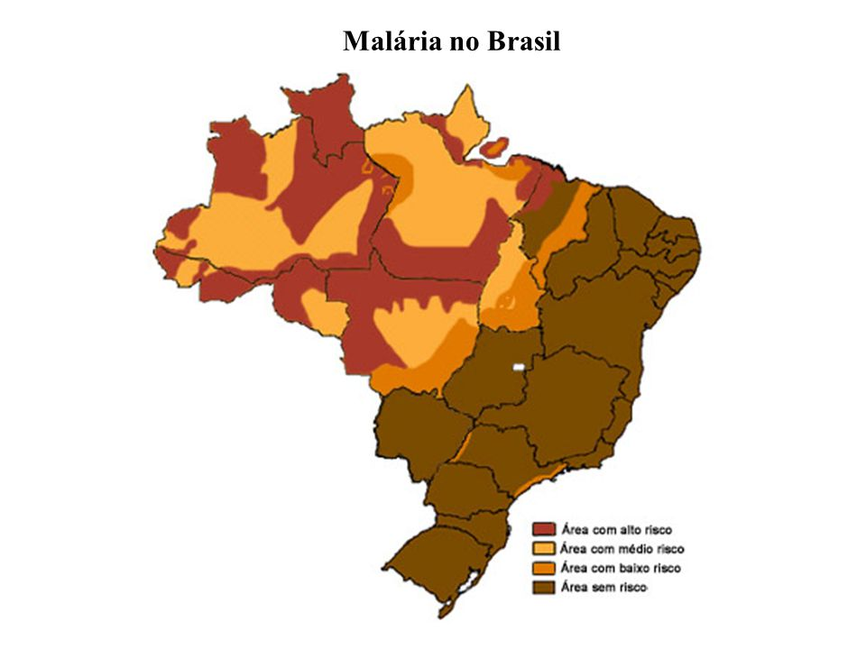 Malária no Brasil
