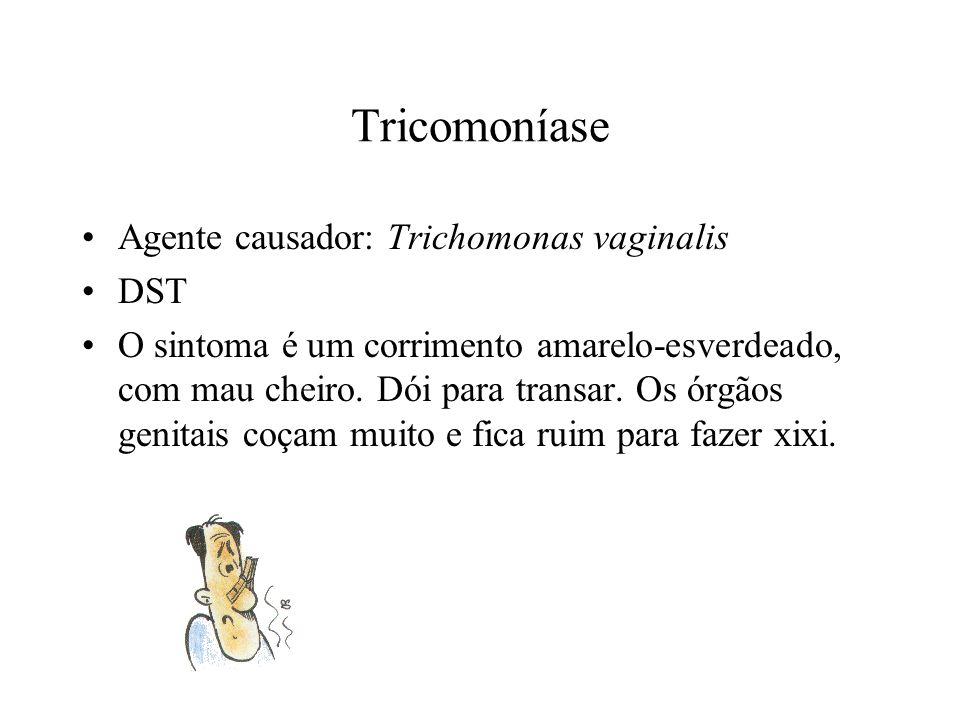 Tricomoníase Agente causador: Trichomonas vaginalis DST O sintoma é um corrimento amarelo-esverdeado, com mau cheiro.