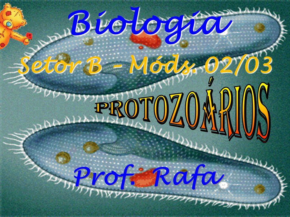 Biologia Prof. Rafa Setor B – Móds. 02/03