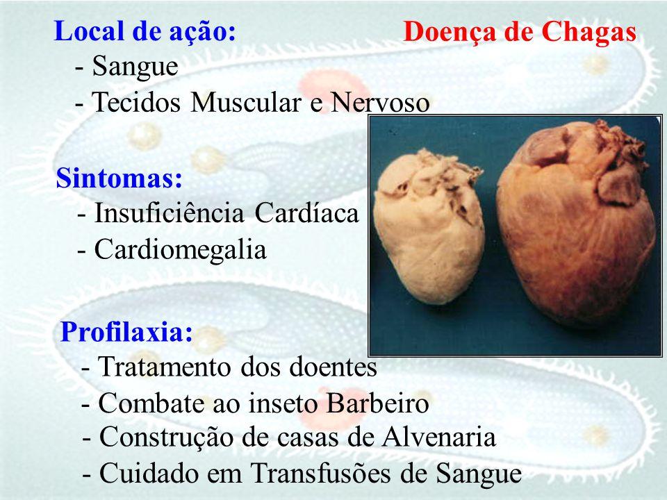 Local de ação: - Tecidos Muscular e Nervoso - Sangue Sintomas: - Cardiomegalia - Insuficiência Cardíaca Profilaxia: - Combate ao inseto Barbeiro - Tra