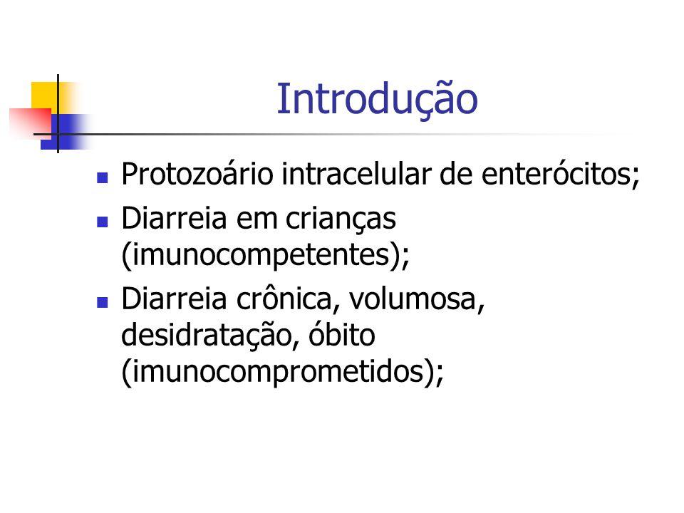 Protozoário intracelular de enterócitos; Diarreia em crianças (imunocompetentes); Diarreia crônica, volumosa, desidratação, óbito (imunocomprometidos);
