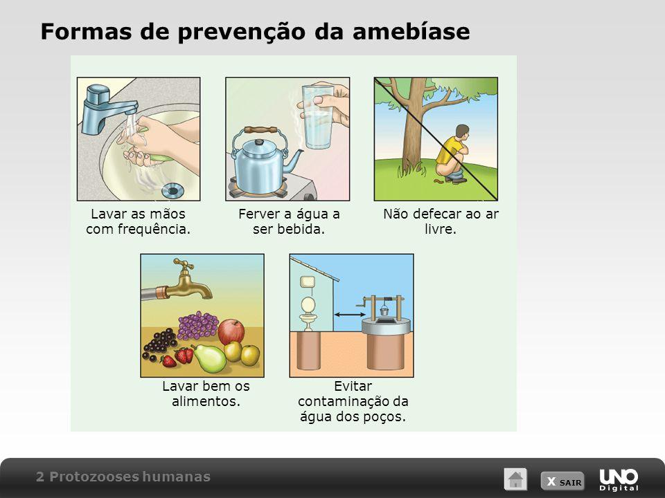 X SAIR Formas de prevenção da amebíase Lavar as mãos com frequência.