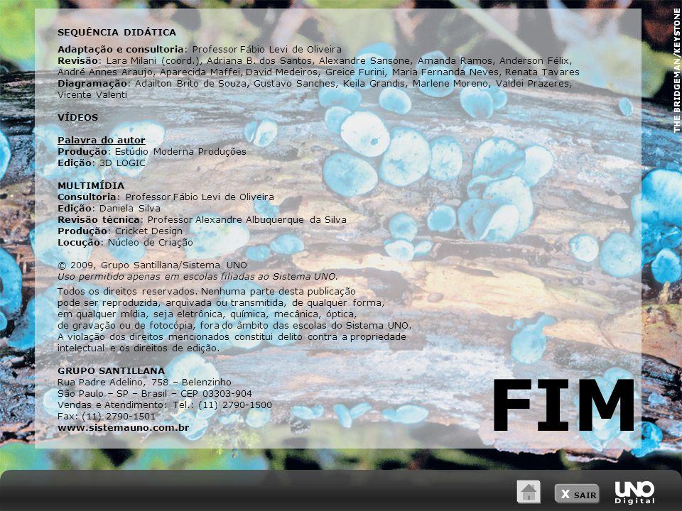 X SAIR THE BRIDGEMAN/KEYSTONE FIM SEQUÊNCIA DIDÁTICA Adaptação e consultoria: Professor Fábio Levi de Oliveira Revisão: Lara Milani (coord.), Adriana B.