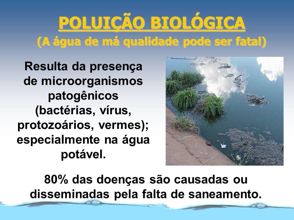POLUIÇÃO BIOLÓGICA (A água de má qualidade pode ser fatal) Resulta da presença de microorganismos patogênicos (bactérias, vírus, protozoários, vermes); especialmente na água potável.