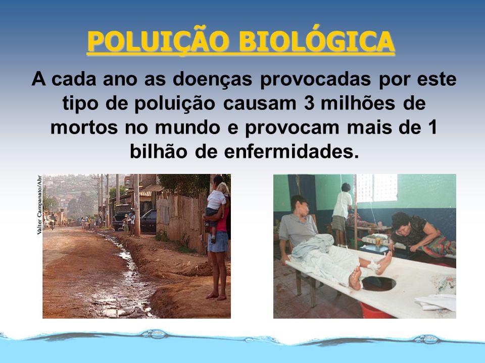 POLUIÇÃO BIOLÓGICA A cada ano as doenças provocadas por este tipo de poluição causam 3 milhões de mortos no mundo e provocam mais de 1 bilhão de enfer
