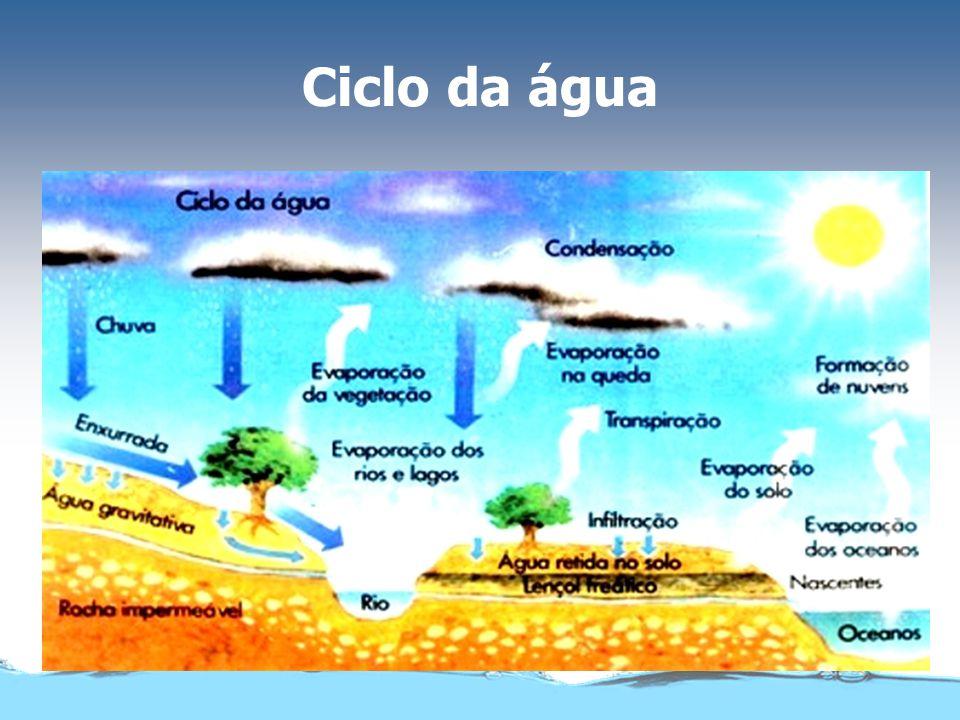 NeveCampo de gelo MarRio Água no estado sólido e líquido