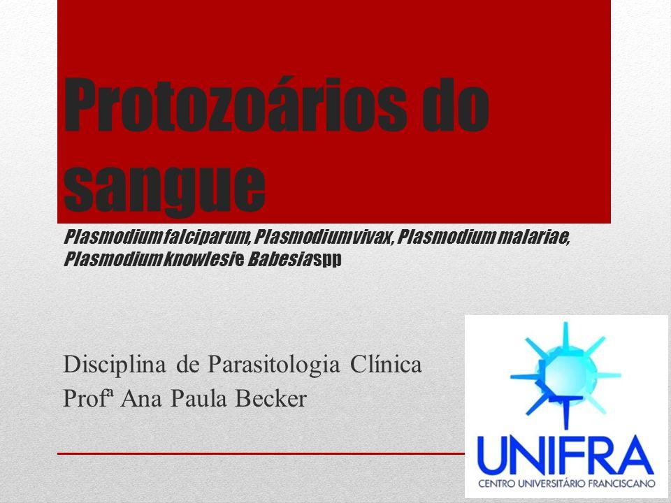 Protozoários do sangue Plasmodium falciparum, Plasmodium vivax, Plasmodium malariae, Plasmodium knowlesi e Babesia spp Disciplina de Parasitologia Clí