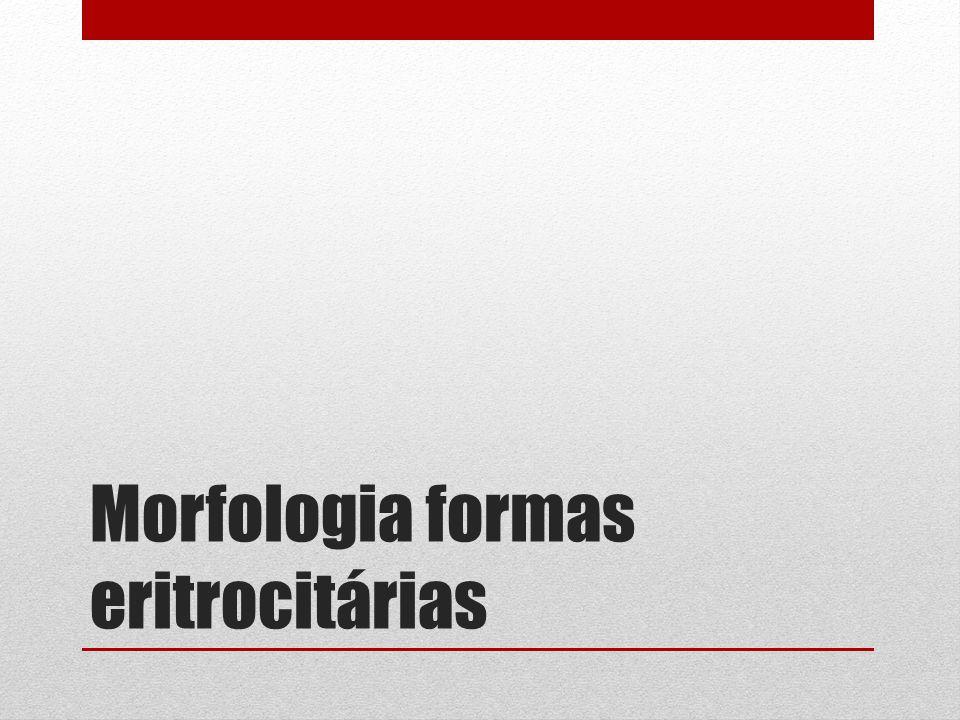 Morfologia formas eritrocitárias