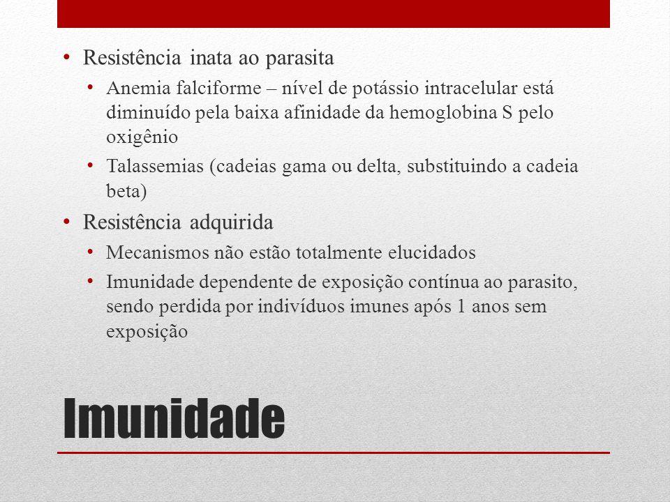 Imunidade Resistência inata ao parasita Anemia falciforme – nível de potássio intracelular está diminuído pela baixa afinidade da hemoglobina S pelo o