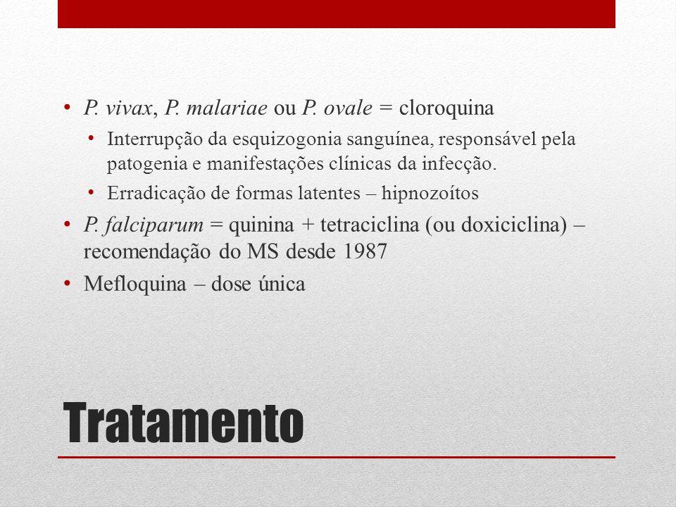 Tratamento P. vivax, P. malariae ou P. ovale = cloroquina Interrupção da esquizogonia sanguínea, responsável pela patogenia e manifestações clínicas d