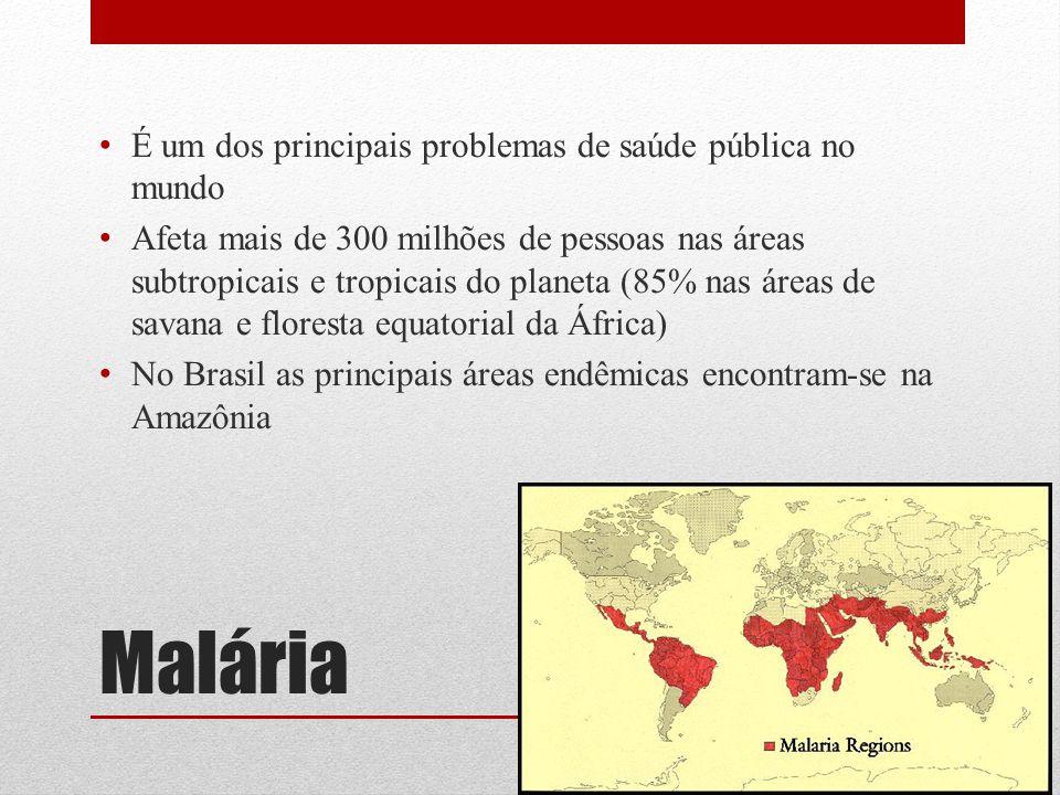 Malária Atualmente são conhecidas cerca de 150 espécies causadoras de malária em diferentes hospedeiros vertebrados 4 parasitam o homem: Plasmodium falciparum, P.